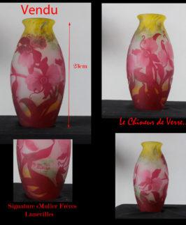 Muller : Vase Orchidées